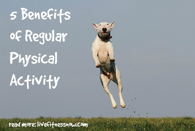 5 Benefits of Regular Physical Activity