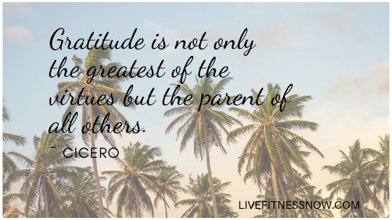 Gratitude is not only the greatest of the virtues but the parent of all others.